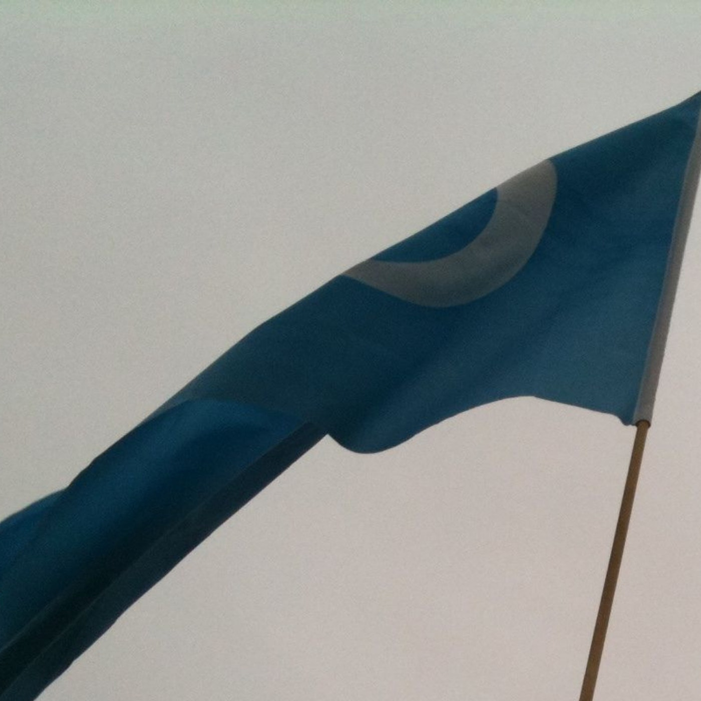 uyghurmuslims