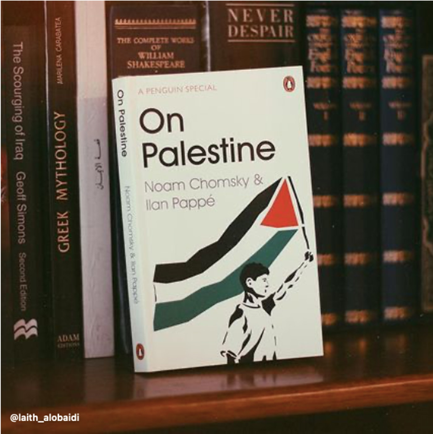 Book On Palestine