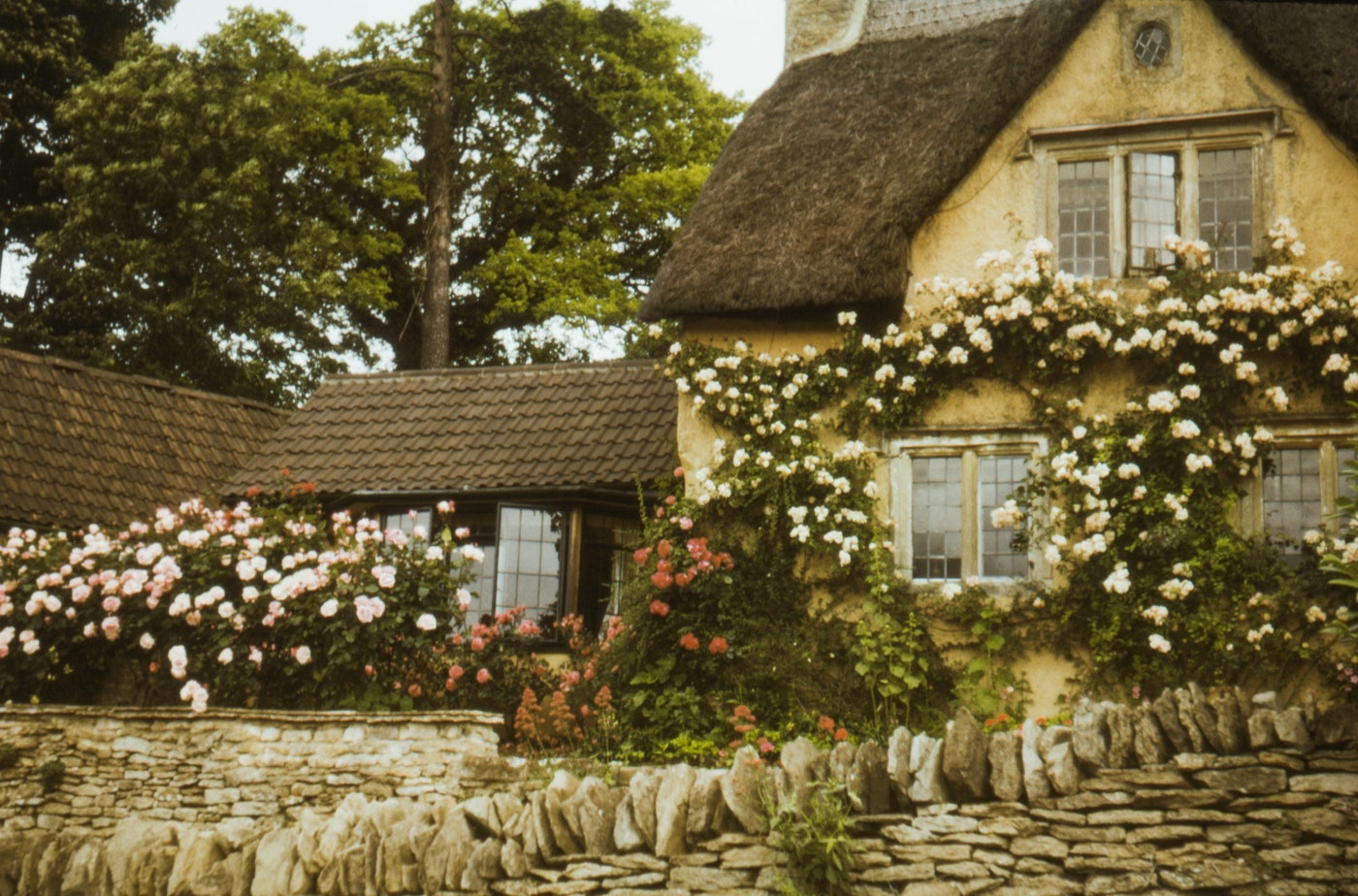 cottage and flowers